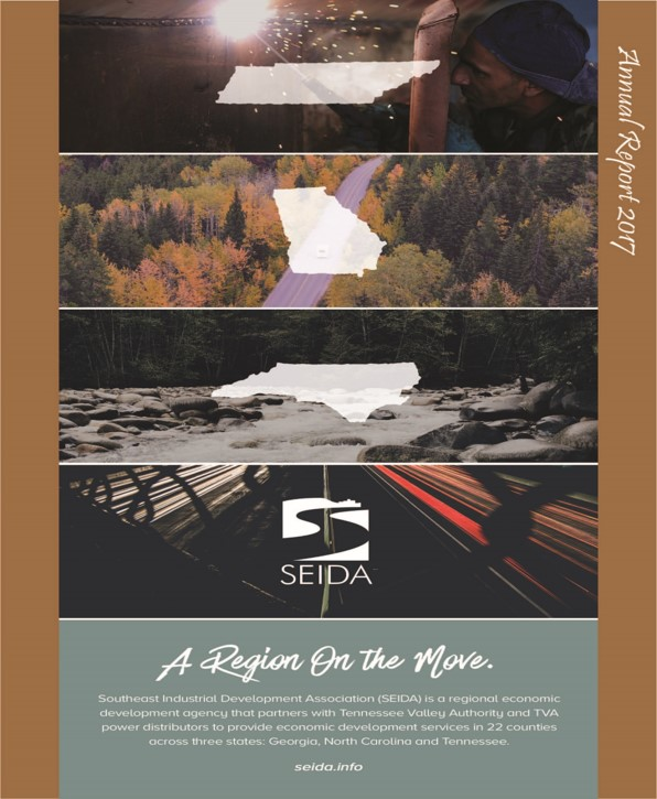 SEIDA Annual Report 2017 Cover Page
