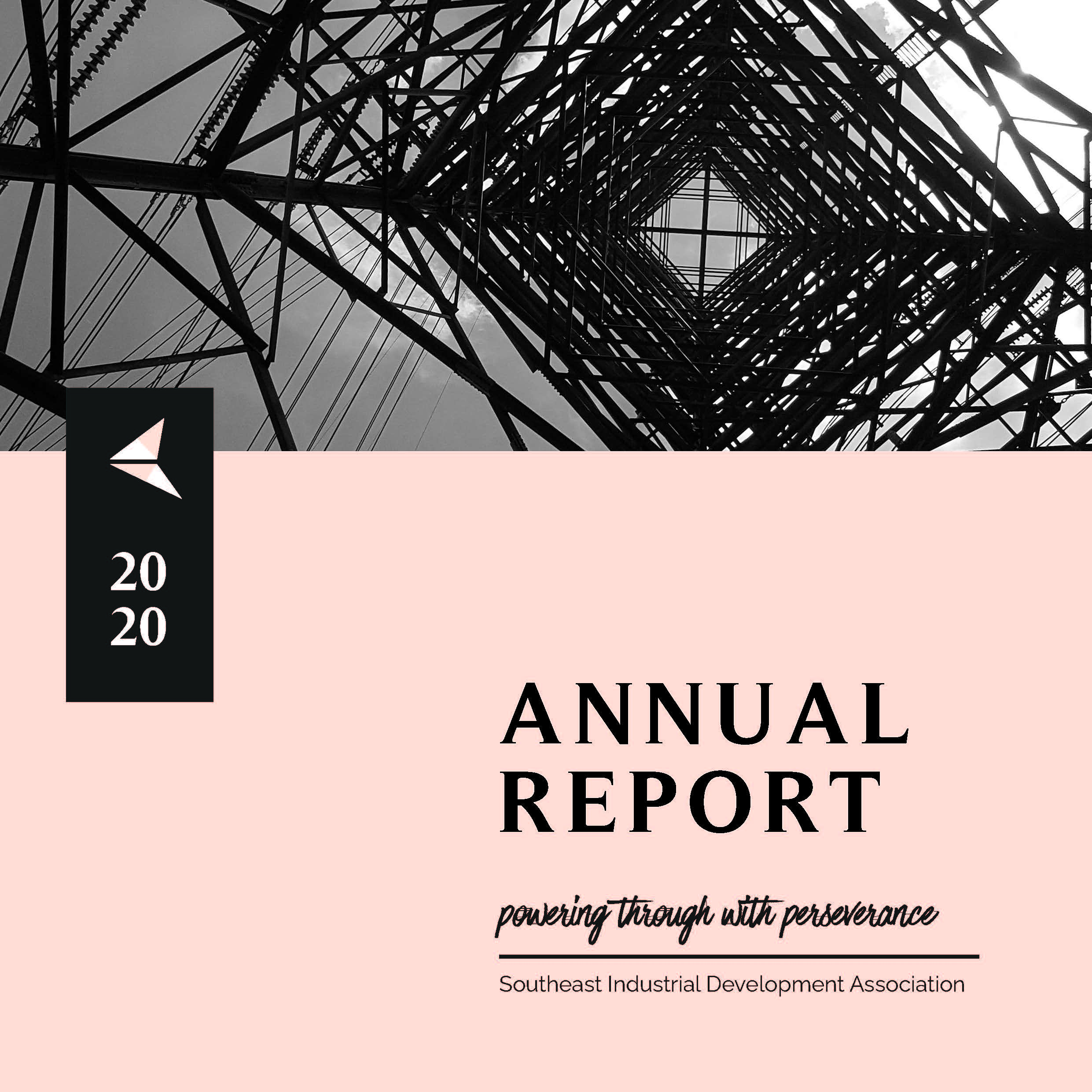 SEIDA annual report 2020_Page_01